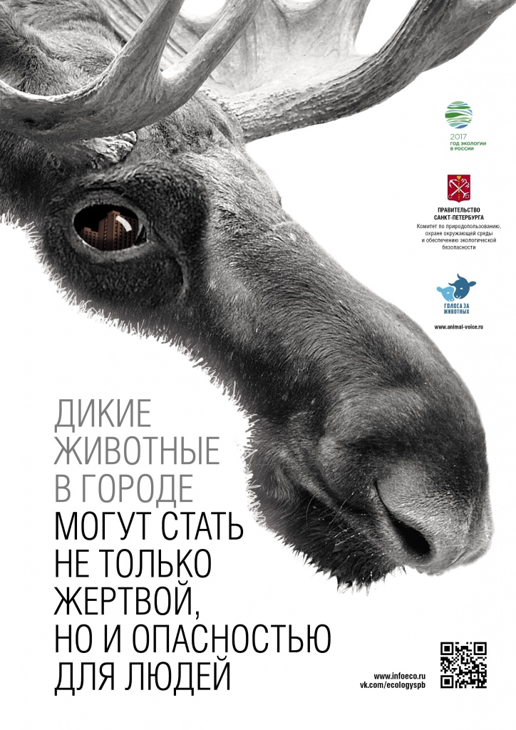 Poster_animal_protection_A3_3.jpg